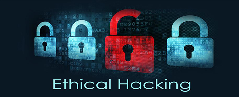 best ethical hacking training in delhi.jpg