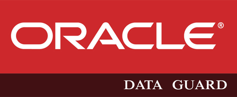 best oracle data guard training in delhi